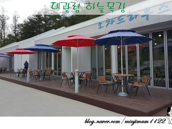 대관령_하늘목장3.png